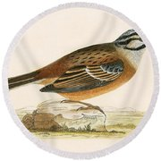Meadow Bunting Round Beach Towel by English School