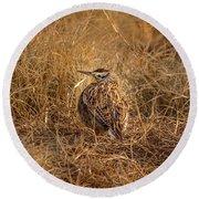 Meadowlark Hiding In Grass Round Beach Towel by Robert Frederick