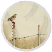 Meadowlark On A Post Round Beach Towel by Pam  Holdsworth