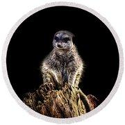 Meerkat Lookout Round Beach Towel by Martin Newman