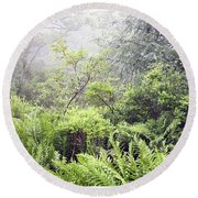 Round Beach Towel featuring the photograph Misty Afternoon In An Eastern Forest Thicket, Pennsylvanis by A Gurmankin