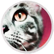 Modern Cat Art - Zebra Round Beach Towel by Sharon Cummings