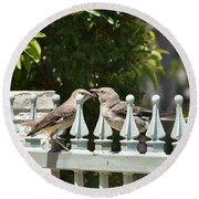 Mr And Mrs Mockingbird With Worms Round Beach Towel by Linda Brody