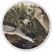 Night Heron Or Qua Bird Round Beach Towel by John James Audubon