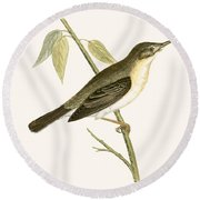 Olivaceous Warbler Round Beach Towel by English School