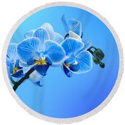 Orchid Blue Round Beach Towel by Mark Rogan