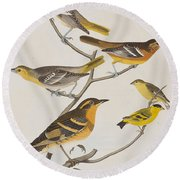 Orioles Thrushes And Goldfinches Round Beach Towel by John James Audubon