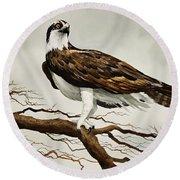 Osprey Sea Hawk Round Beach Towel by James Williamson