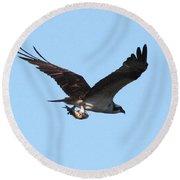 Osprey With Fish Round Beach Towel by Carol Groenen