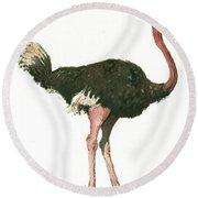 Ostrich Bird Round Beach Towel by Juan Bosco