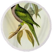 Parakeet Round Beach Towel by John Gould