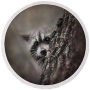 Peekaboo Raccoon Art Round Beach Towel by Jai Johnson