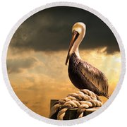 Pelican After A Storm Round Beach Towel by Mal Bray