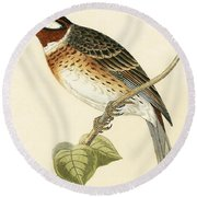 Pine Bunting Round Beach Towel by English School