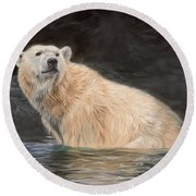 Polar Bear Round Beach Towel by David Stribbling