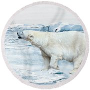 Polar Bear Round Beach Towel by Heike Hultsch