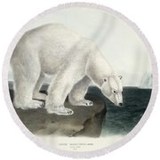 Polar Bear Round Beach Towel by John James Audubon