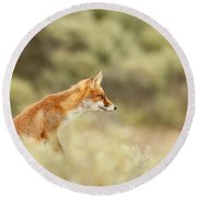 Princess Of The Hill - Red Fox Sitting On A Dune Round Beach Towel by Roeselien Raimond