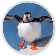 Puffin Dance Round Beach Towel by Bruce J Robinson