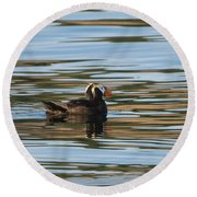 Puffin Reflected Round Beach Towel by Mike Dawson