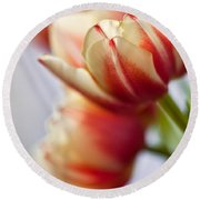 Red And White Tulips Round Beach Towel by Nailia Schwarz