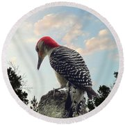 Red-bellied Woodpecker - Tree Top Round Beach Towel by Al Powell Photography USA