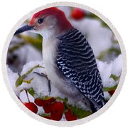 Red Bellied Woodpecker Round Beach Towel by Ron Jones