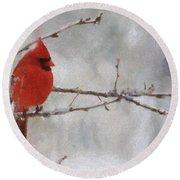 Red Bird Of Winter Round Beach Towel by Jeff Kolker