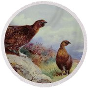 Red Grouse On The Moor, 1917 Round Beach Towel by Archibald Thorburn
