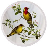 Red Headed Bunting Round Beach Towel by John Gould