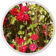 Red Roses In Summertime Round Beach Towel by Arletta Cwalina