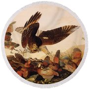 Red Shouldered Hawk Attacking Bobwhite Partridge Round Beach Towel by John James Audubon