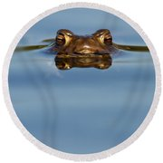 Reflections - Toad In A Lake Round Beach Towel by Roeselien Raimond