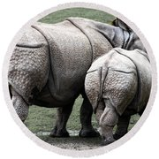 Rhinoceros Mother And Calf In Wild Round Beach Towel by Daniel Hagerman
