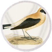 Russet Wheatear Round Beach Towel by English School