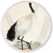 Sacred Ibis Round Beach Towel by English School