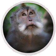 Sacred Monkey Forest Sanctuary Round Beach Towel by Larry Marshall