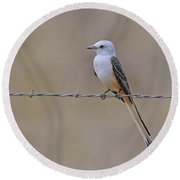 Scissor-tailed Flycatcher Round Beach Towel by Tony Beck