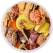 Sea Horses And Sea Shells Round Beach Towel by Garry Gay