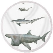 Sharks In The Deep Ocean Round Beach Towel by Juan Bosco