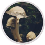 Shroom Family Round Beach Towel by Shane Holsclaw