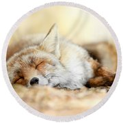 Sleeping Beauty -red Fox In Rest Round Beach Towel by Roeselien Raimond