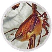 Slim Pickens, Carolina Wren Round Beach Towel by Ken Everett
