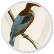 Smyrna Kingfisher Round Beach Towel by English School