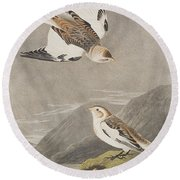 Snow Bunting Round Beach Towel by John James Audubon