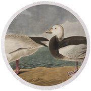 Snow Goose Round Beach Towel by John James Audubon