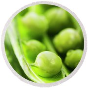 Snow Peas Or Green Peas Seeds Round Beach Towel by Vishwanath Bhat