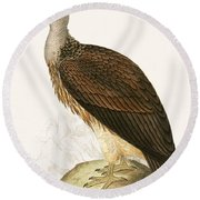 Sociable Vulture Round Beach Towel by English School