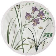 Softly Purple Crocus Round Beach Towel by Mindy Sommers