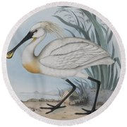 Spoonbill Round Beach Towel by John Gould